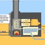Producción de biomasa para caldera de pellets