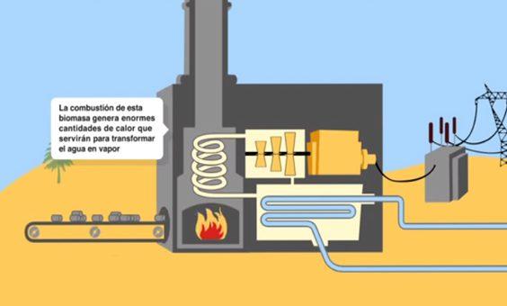 ¿Qué es la Biomasa?.